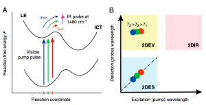 Extreme Cross-peak 2D spectroscopy